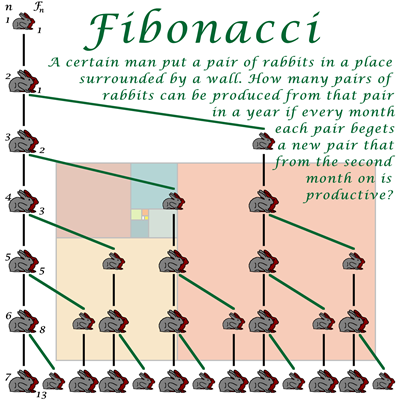 fibonacci sequence in reproduction The fibonacci sequence is the number sequence 0,1,1,2,3,5,8,13 and so on to infinity this mathematical formula is found by adding up the two numbers before it in the sequence 0+1=1 1+1=2 1+2=3 2+3=5 and so on.