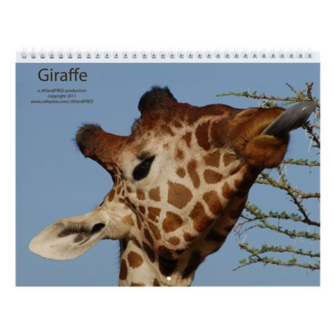 Giraffe 2013 Wall Calendar