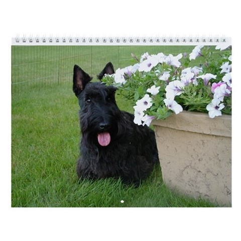 Dugan and Friends Scottie 2013 Wall Calendar